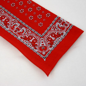 Snuff Handkerchief - Red Paisley Border