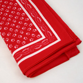 Snuff Handkerchief - Red Pattern
